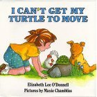 I can't get my turtle to move